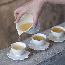 Faces of Tea: Dong-Ding Tea